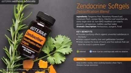 zendocrine2