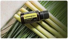 lemongrass7