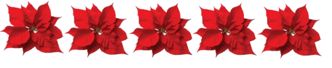 poinsettias1.jpg.png