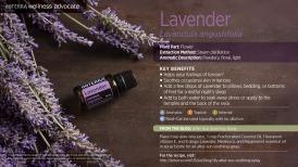 wa-lavender