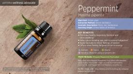 wa-peppermint.jpg