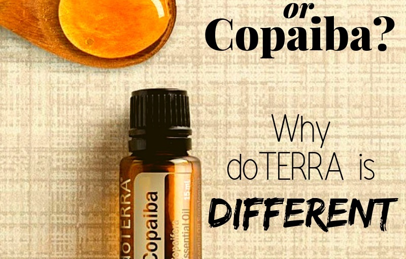 CBD Oil or Copaiba: What's the Difference?